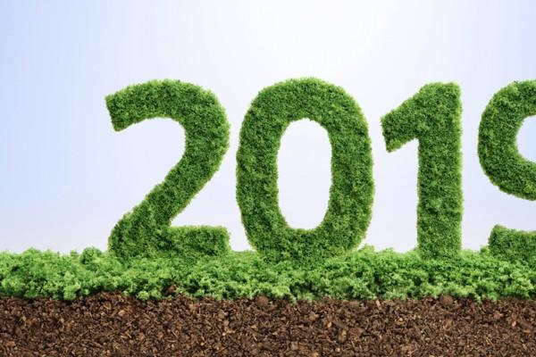 Steuererklärung 2019: Das sind die Neuerungen & Änderungen